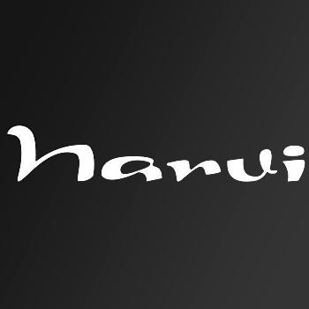 Logo de Narvi para descarga de catálogo